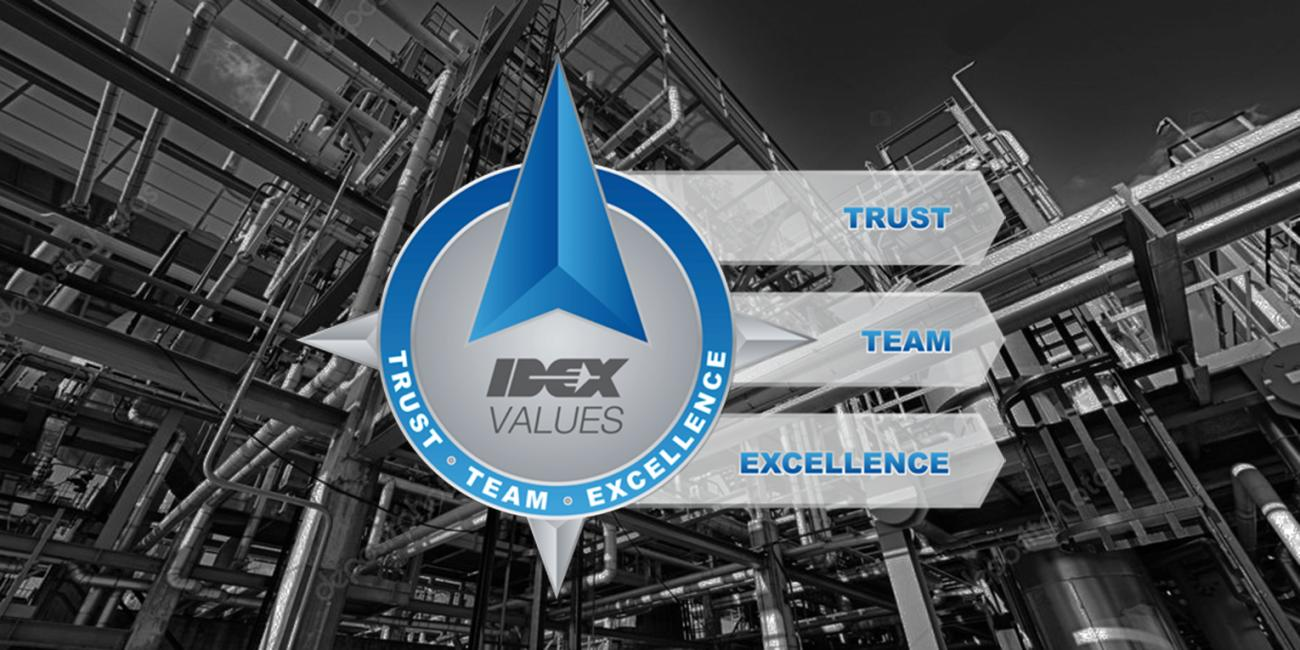 TRUST TEAM EXCELLENCE
